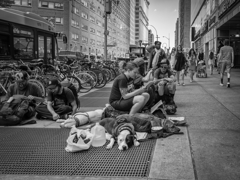 new york homeless with dogs, Megan Crandlemire Photography