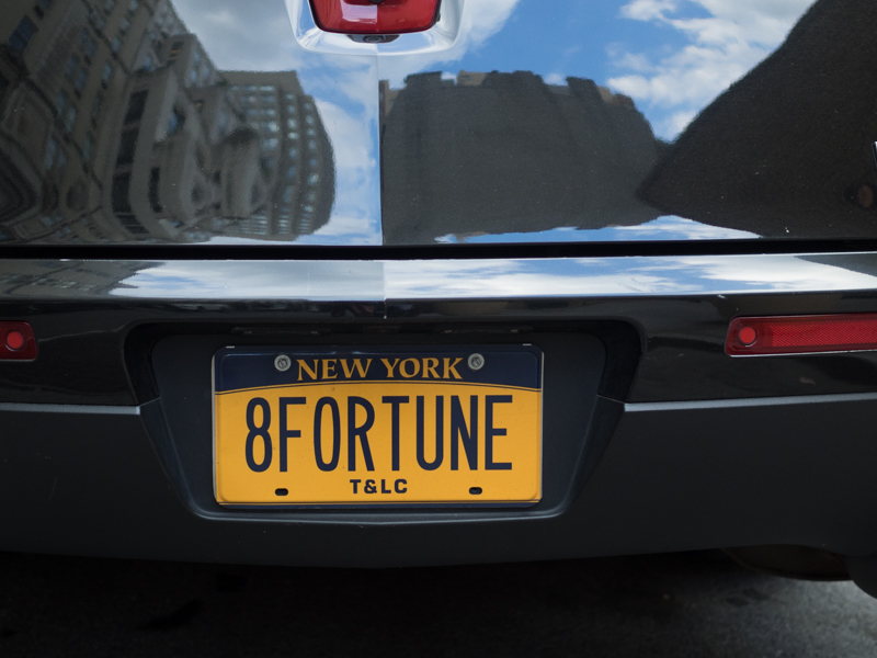 8fortune new york,central park, Megan Crandlemire Photography